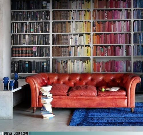 balance,bookcase,color,couch,organized,rainbow