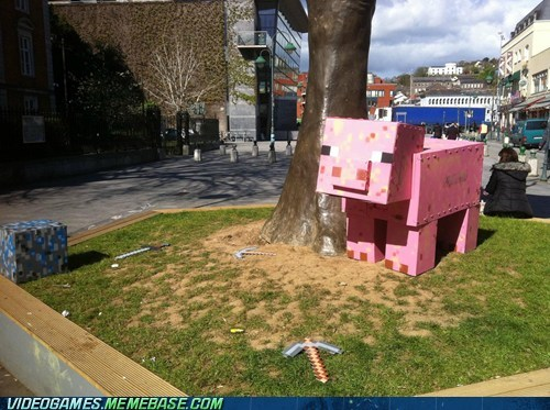 blocks,IRL,minecraft,pig