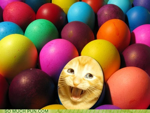 easter eggs ichc easter egg hunt - 6079395584