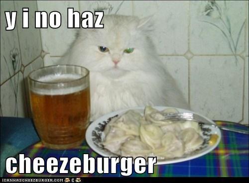 Cheezburger Image 6079820032