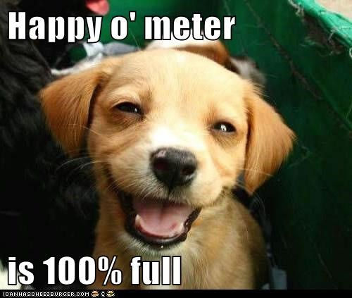 Happy o' meter is 100% full
