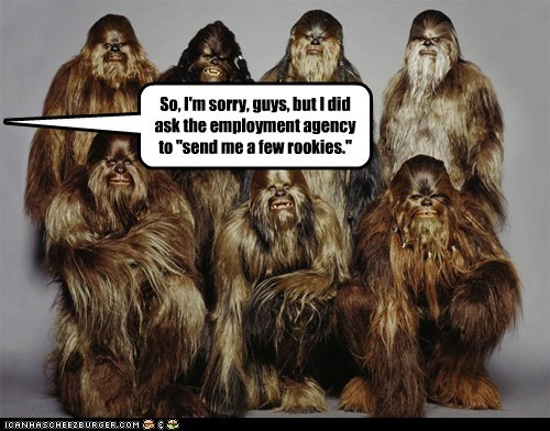 agency employment jobs rookies sorry wookie