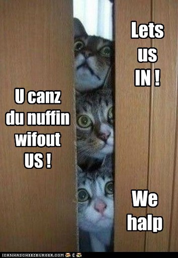 Lets us IN ! U canz du nuffin wifout US ! We halp
