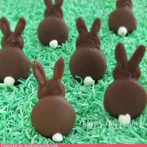 bunnies chocolate cookies ears epicute tails - 6082577664