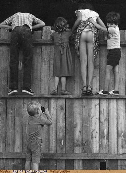 fence IRL photobomb - 6084260352