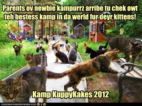 Parents ov newbie kampurrz arribe tu chek owt teh bestess kamp in da werld fur deyr kittens! Kamp KuppyKakes 2012