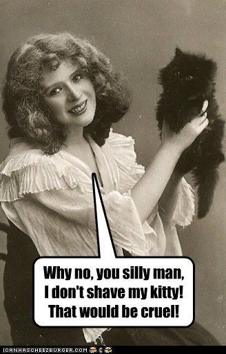 Why no, you silly man, I don't shave my kitty! That would be cruel!