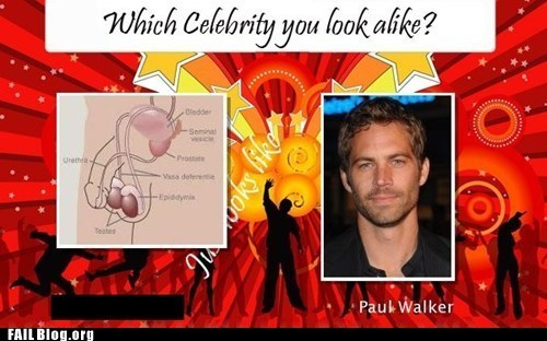 celeb,p33n,paul walker,wtf