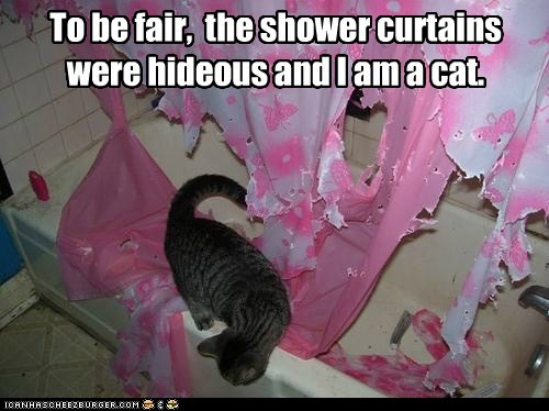 bathroom because cat Cats destroy destruction gross hate lolcat shower shower curtain shower curtains shred ugly - 6086076672
