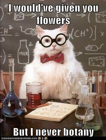 Botany,Cats,chemistry cat,flowers,Hall of Fame,plants,puns,science