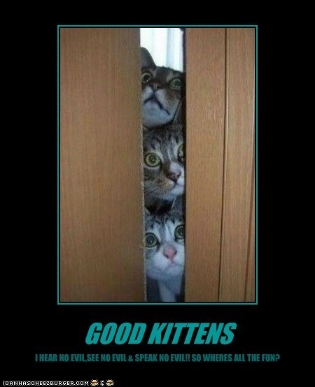 GOOD KITTENS I HEAR NO EVIL,SEE NO EVIL & SPEAK NO EVIL!! SO WHERES ALL THE FUN?