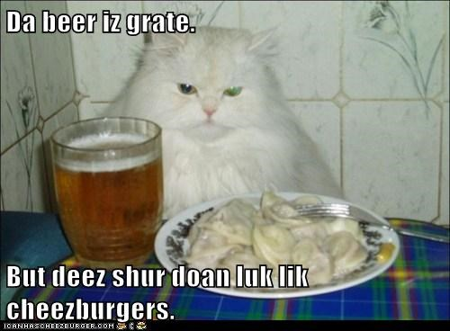 Cheezburger Image 6087589632