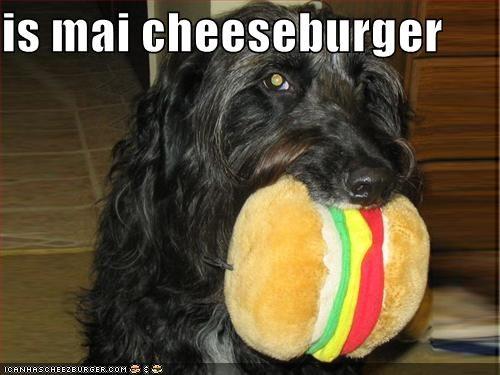 Cheezburger Image 608890112
