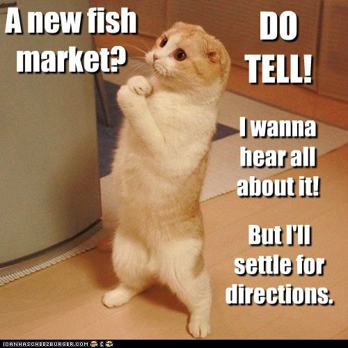 directions,fish,fish market,fishmongers,listen,market,please