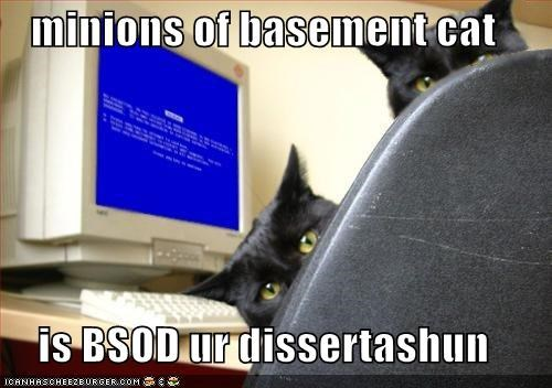 basement cat black bsod lolcats photoshopped religion shopped - 608956160