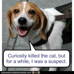 beagle,Cats,curiosity,curiosity killed the cat,dogs,jokes,kill,murder,suspects