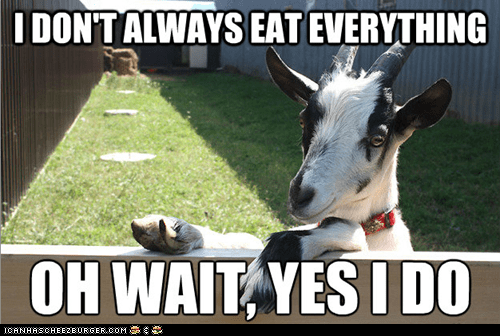 eat everything fence goats Memes the most interesting man in the world - 6090280960