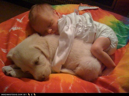baby best of the week cuddling cyoot puppy ob teh day Hall of Fame puppy
