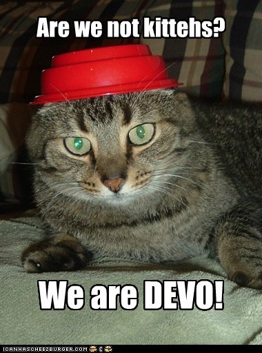 Are we not kittehs? We are DEVO!