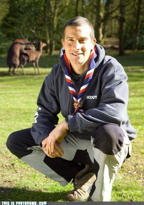Animal Bomb bear grylls best of week celeb man-vs-world-animals TV - 6091046400