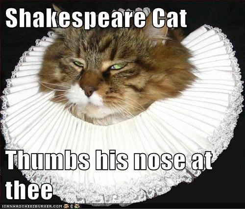 best of the week,book,cat,Cats,despise,Hall of Fame,hate,literature,lolcat,nose,reference,shakespeare,thumb