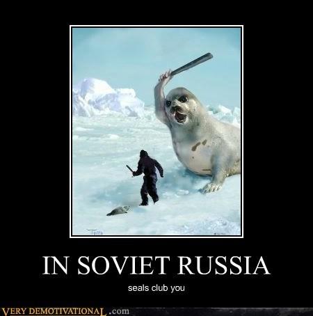 club hilarious seal Soviet Russia - 6091276544