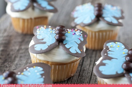 butterflies chocolate cupcakes epicute sprinkles - 6091411968