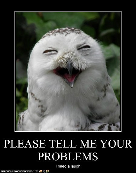 condescending,laughing,love,mean,Owl,owls,please,problems