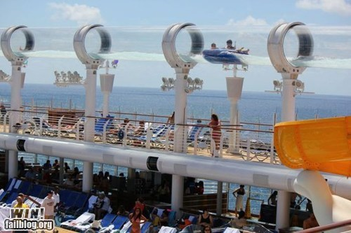 cruise,vacation,water slide,whee,wincation