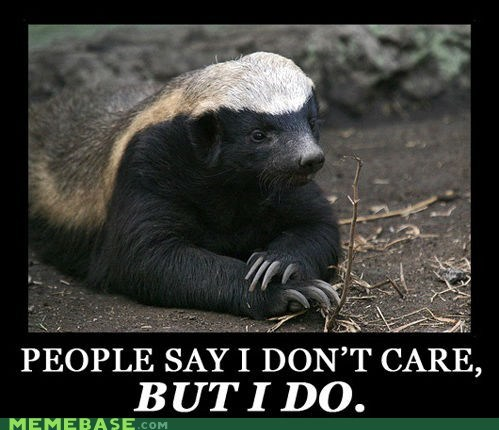 dont-care,honey badger,i care,Memes,WATERMARK CUT OFF