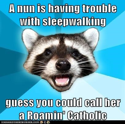 catholic Hall of Fame Lame Pun Coon Memes nuns puns religion roaming roman catholic sleepwalking - 6091791616