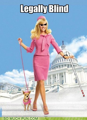 amazing blind Hall of Fame legally blonde Movie poster Reese Witherspoon similar sounding terrigood - 6092239616