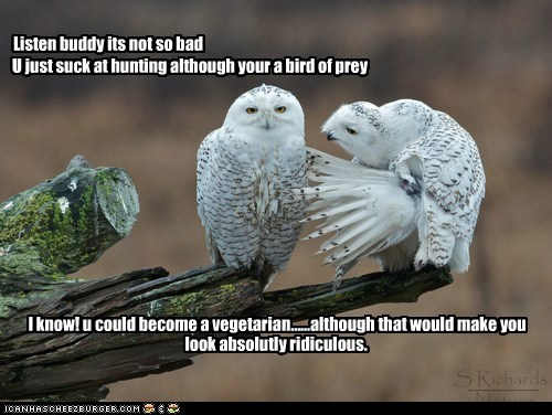 U just suck at hunting although your a bird of prey Listen buddy its not so bad I know! u could become a vegetarian......although that would make you look absolutly ridiculous.