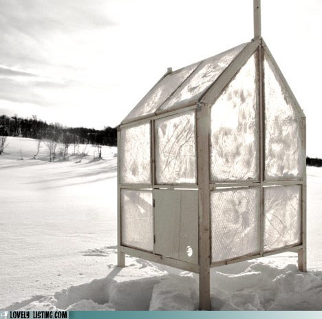 cold,ice,ice hut,walls,windows