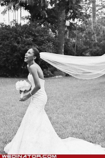 bride funny wedding photos hair head ouch pull veil - 6095250944