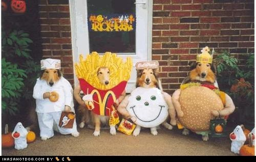 costume,dogs,McDonald's,shelties