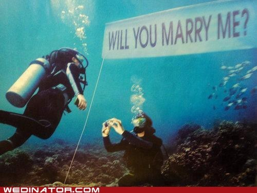 funny wedding photos marry me ocean proposal scuba water