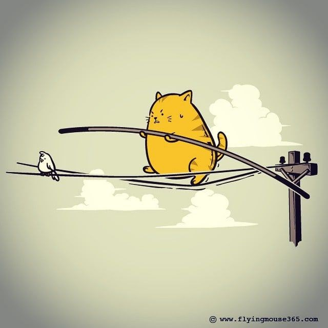 cute drawings animal comic chubby chonky cat holding a stick balancing on a power line following a bird