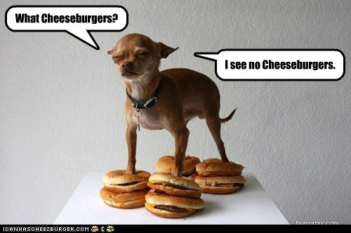Cheezburger Image 6097498112