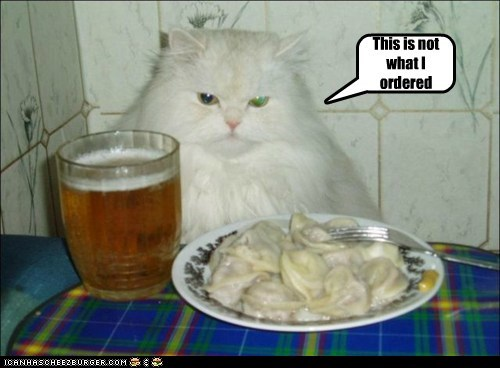 Cheezburger Image 6097891328