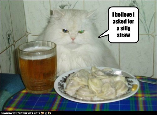 ask Cats food request straw