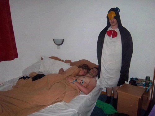 asleep,costume,penguin