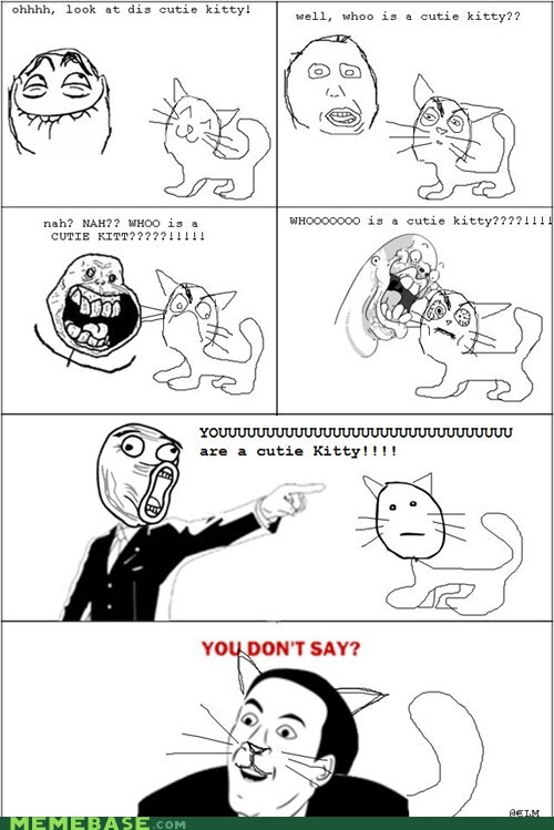 Cats cute forever alone Rage Comics you dont say - 6098648064