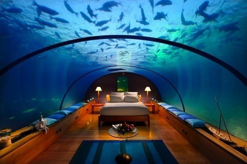 aquarium,Hall of Fame,hotel,maldives,underwater