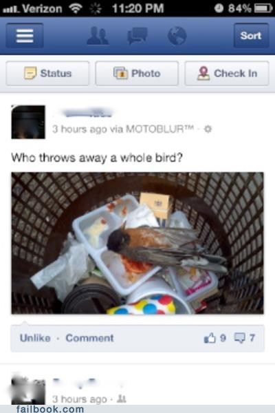 bird dead dead bird trash waste wasteful
