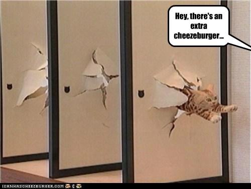 Cheezburger Image 6099075584