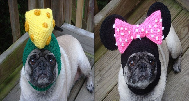 cute hats dogs lolz pug puppies funny pugs hats cute etsy lol cute pugs modeling pug hats funny store - 6099205