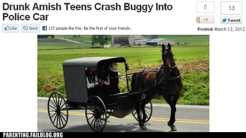 amish,buggy,crash,drunk teens,police car
