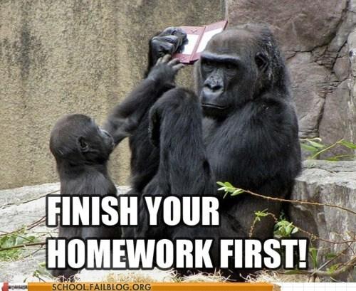 finish your homework gameboy gorillas - 6099971072