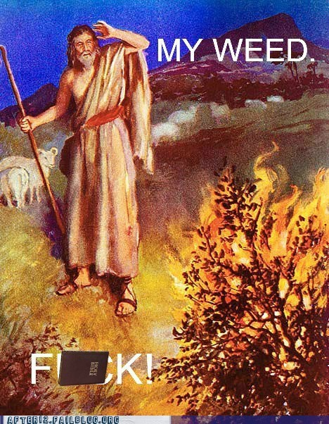 burning bush,god,Hall of Fame,kush,marijuana,moses,weed